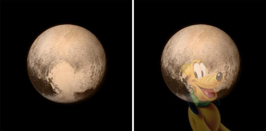 Pluto the dog